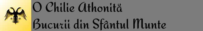 O Chilie Athonită: Bucurii din Sfântul Munte